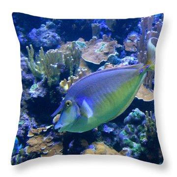 Bluespine Unicornfish Throw Pillow by Karon Melillo DeVega