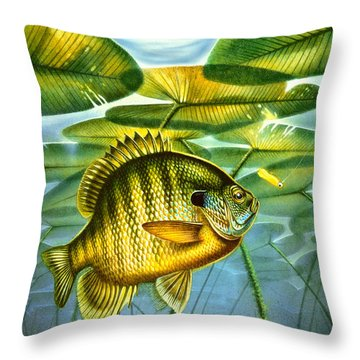 Throw Pillow featuring the painting Blugill And Lilypads by Jon Q Wright