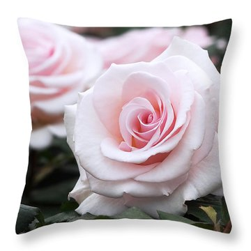 Blush Pink Roses Throw Pillow