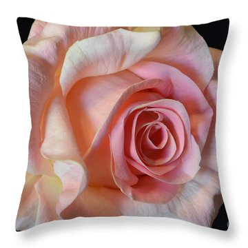Throw Pillow featuring the photograph Blushing Pink Rose by Jeannie Rhode