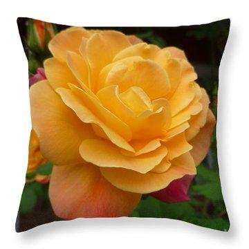 Throw Pillow featuring the photograph Blushing Rosalina by Lingfai Leung