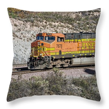 Throw Pillow featuring the photograph Bn 7678 by Jim Thompson