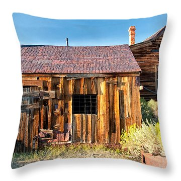 Boarded Up Throw Pillow by Cat Connor