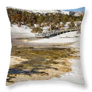 Boardwalk In The Park Throw Pillow