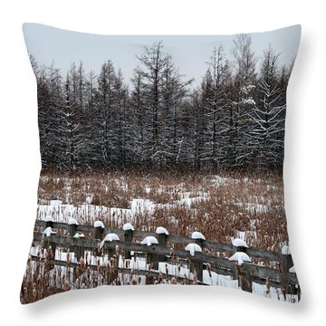 Throw Pillow featuring the photograph Boardwalk Series No1 by Bianca Nadeau