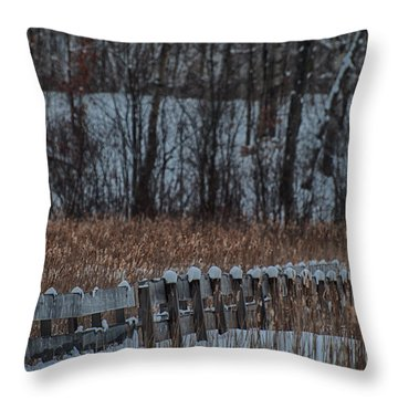 Throw Pillow featuring the photograph Boardwalk Series No2 by Bianca Nadeau