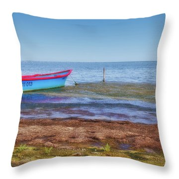 Boat At The Pond Throw Pillow