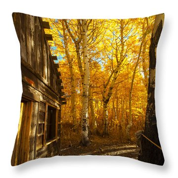 Boat House Among The Autumn Leaves  Throw Pillow