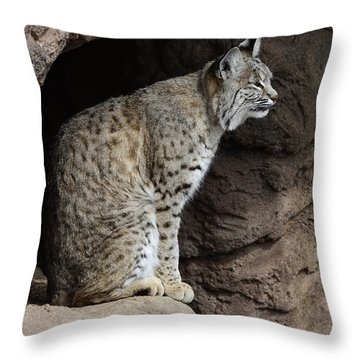 Bobcat Throw Pillow by Bob Christopher