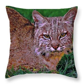 Bobcat Sedona Wilderness Throw Pillow by Bob and Nadine Johnston