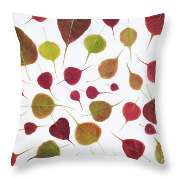 Fig Tree Throw Pillows