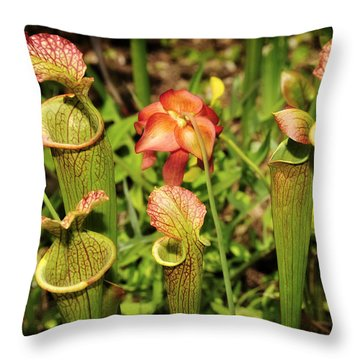 Throw Pillow featuring the photograph Bog Garden I by Davina Washington