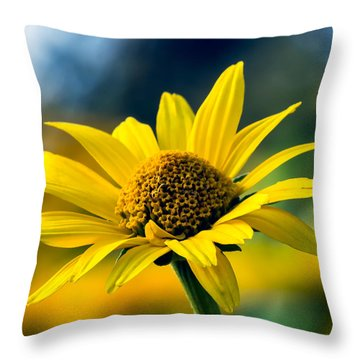 Bokeh Beauty Throw Pillow