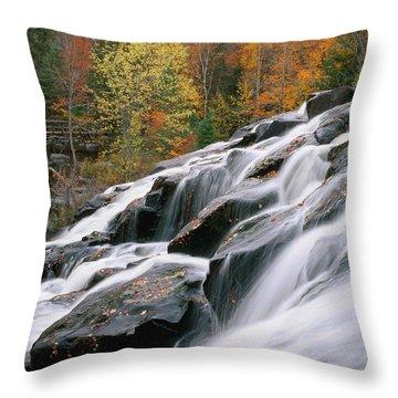 Bond Falls Upper Peninsula Michigan Throw Pillow