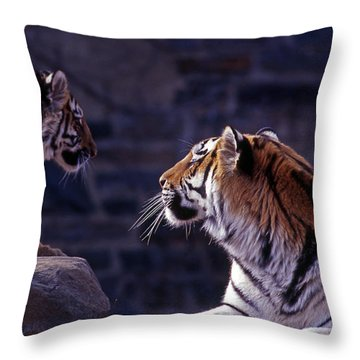 Bonding Throw Pillow by Skip Willits