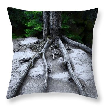 Throw Pillow featuring the photograph Bones by David Andersen