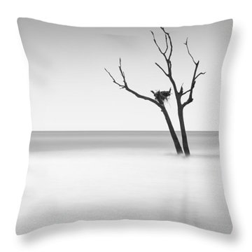Boneyard Beach - II Throw Pillow