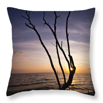Throw Pillow featuring the photograph Bonita Beach Tree by Bradley R Youngberg