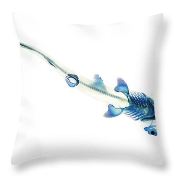 Reef Shark Throw Pillows