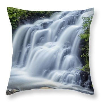 Bonnington Throw Pillow