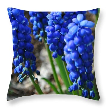 Bonny Blue Throw Pillow