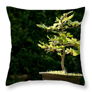 Bonsai Throw Pillow by Jane Rix