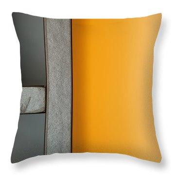 Bookshelf Throw Pillow by Theresa Tahara