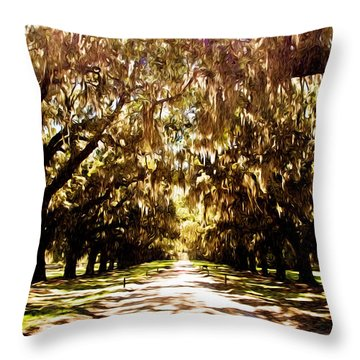 Boone Plantation Throw Pillow by Bill Howard