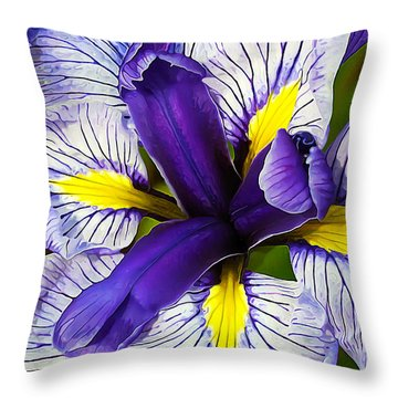 Throw Pillow featuring the photograph Boothbay Beauty by ABeautifulSky Photography