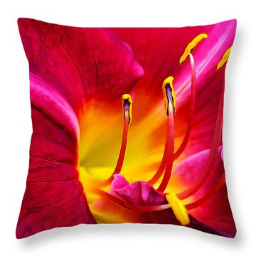 Boothbay Burgundy Throw Pillow