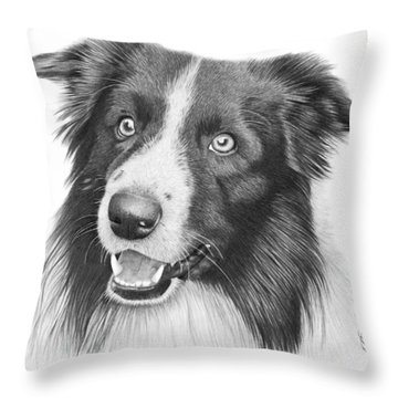 Border Collie -030 Throw Pillow by Abbey Noelle