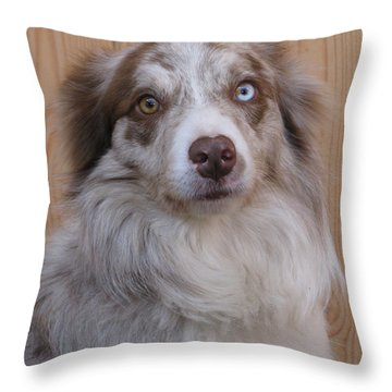 Border Collie With Blue-eyed Throw Pillow by Eva Csilla Horvath