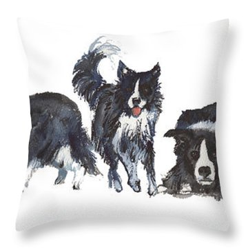 Border Patrol Throw Pillow