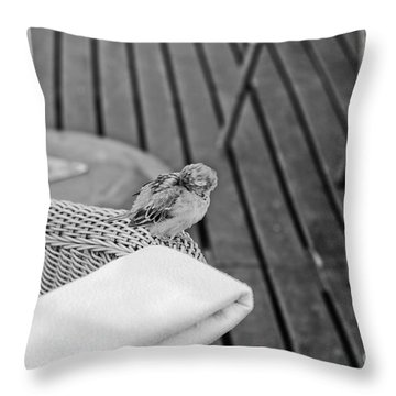 Boring Party Throw Pillow