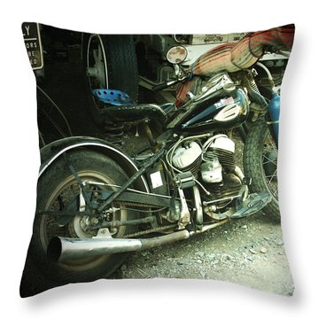 Born In The Usa Throw Pillow by Christine Till