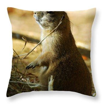 Born On The Prairie Throw Pillow