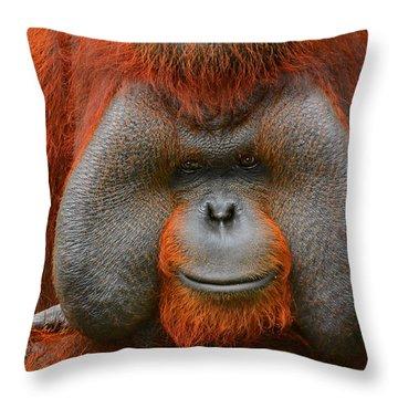 Bornean Orangutan Throw Pillow by Lourry Legarde