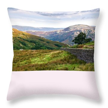 Throw Pillow featuring the photograph Borrowdale Valley In The Lake District by Jane McIlroy