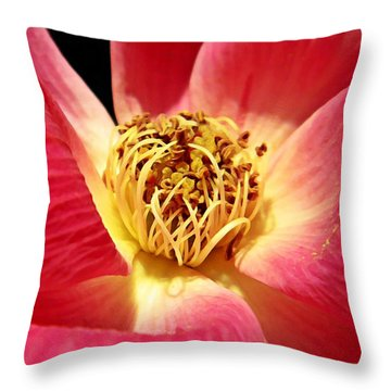 Borrowed Rose Throw Pillow by Chris Berry