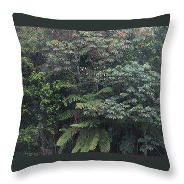 Bosque Throw Pillow