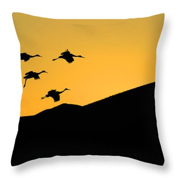 Bosque Del Apache Last Light Throw Pillow by Bob Christopher