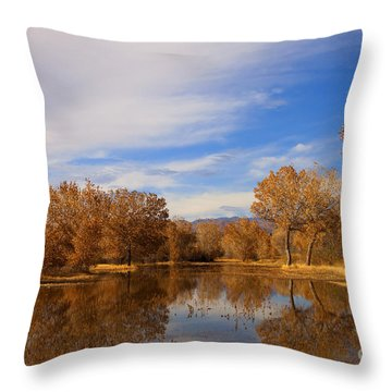 Bosque Del Apache Reflections Throw Pillow by Mike  Dawson