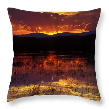 Bosque Sunset - Orange Throw Pillow by Steven Ralser
