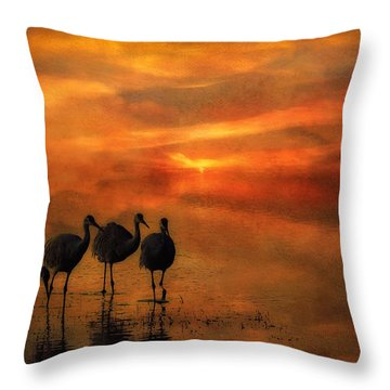 Bosque Sunset Throw Pillow by Priscilla Burgers