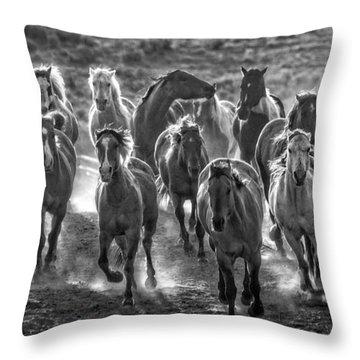 Boss Hoss Throw Pillow by Joan Davis