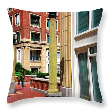 Boston Interior Throw Pillow