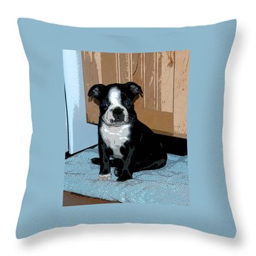 Throw Pillow featuring the photograph Boston Terrier Art02 by Donald Williams