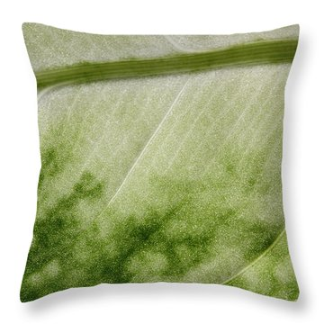 Botanical Freeway Throw Pillow