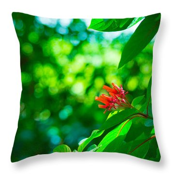 Botanical Garden Butterfly Throw Pillow