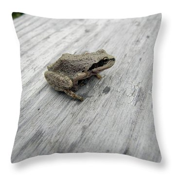 Botanical Gardens Tree Frog Throw Pillow by Cheryl Hoyle